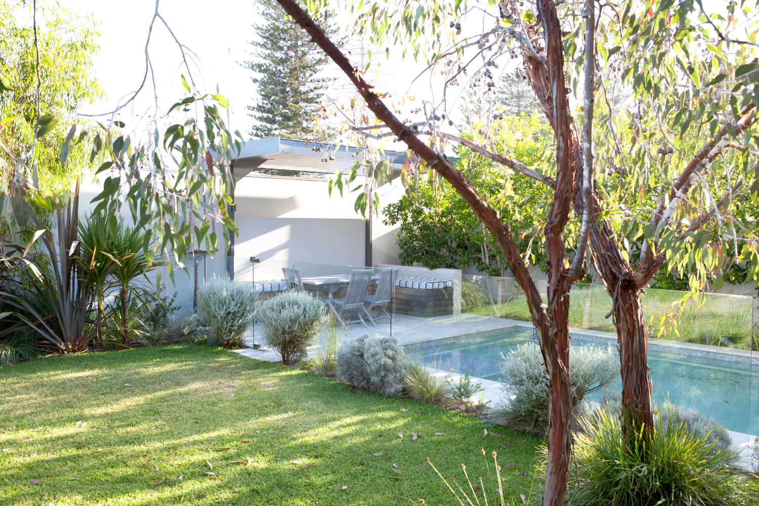 beautiful pool surrounded by greenery from trees, plants and grass
