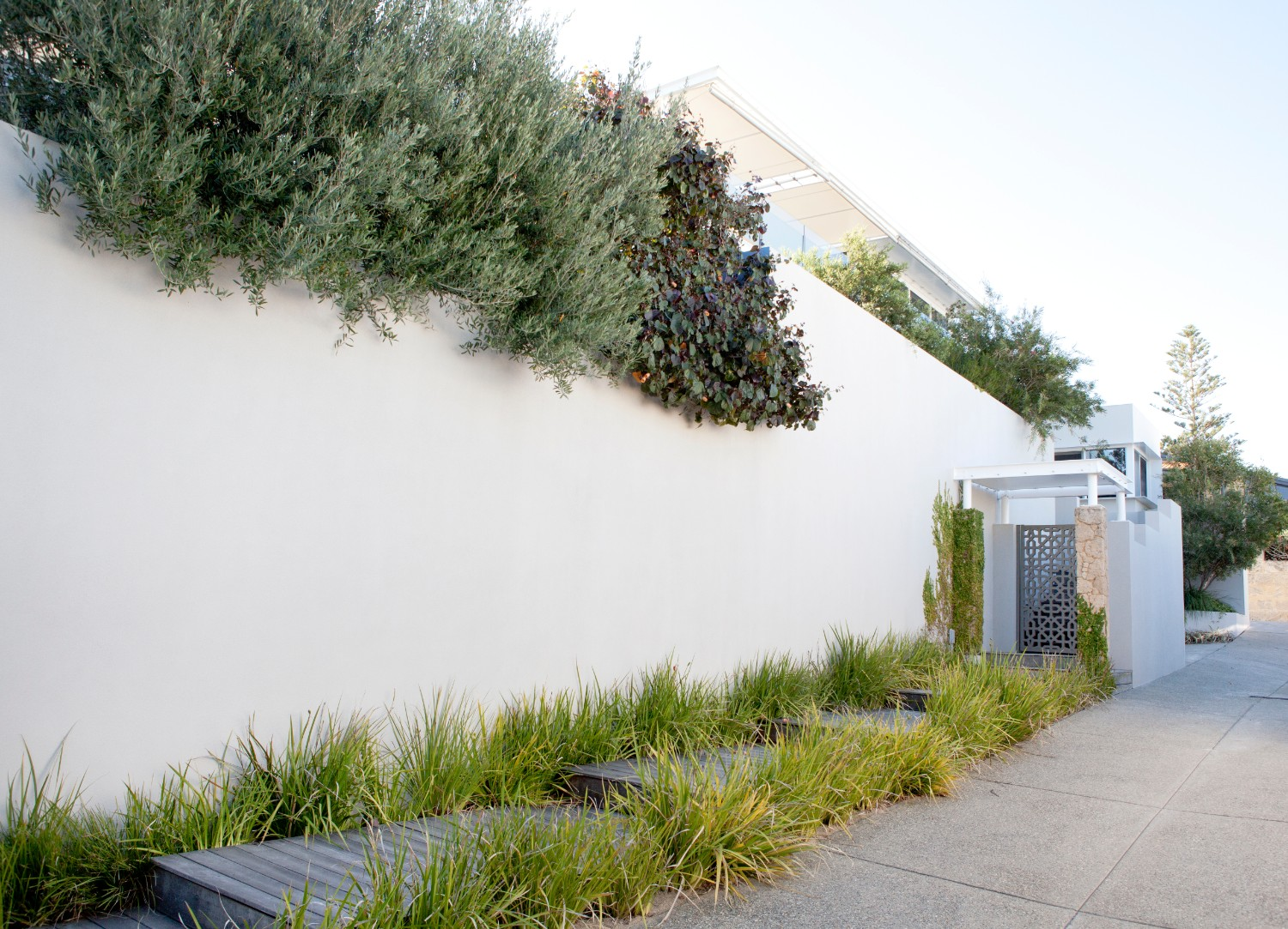 steps leading to house down laneway with garden growing above walls